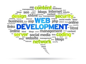 web development my tech india